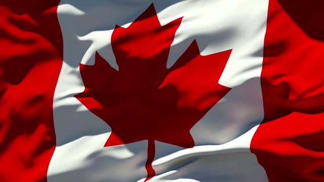 カナダの新型コロナウイルス感染症への対応状況