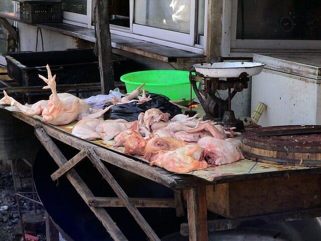 中国の野生動物取引が投げかける人類への問題点を考える